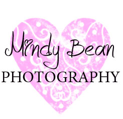 Las Vegas Wedding Photographer | Mindy Bean Photography Blog logo